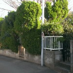 糟屋郡宇美町の地域墓地で現場確認。