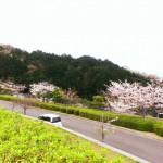 福岡市営西部霊園にてお墓新設の打ち合わせ。