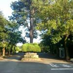 平尾霊園のお墓のリフォーム・改修。現地確認に