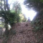 筑紫野市二日市の地域墓地、お墓じまいのご相談