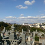 平尾霊園にてお墓クリーニング作業は順調に進んでいます!