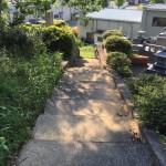 糟屋郡須恵町の地域墓地で現地確認を行いました。