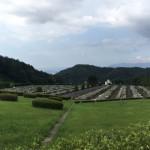 福岡中央霊園で現地確認を行いました。