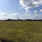 佐賀県神崎郡の地域墓地にやってきました
